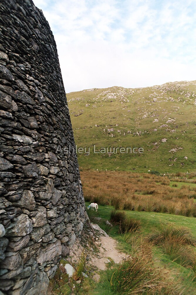 Staigue and Goat by Ashley Lawrence