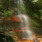 Federal Falls in the Blue Mountains by Michael Matthews