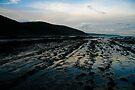 Coastlines by Richard Heath