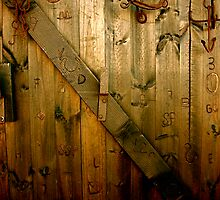 Doors of your life... by senking