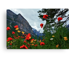 Peaks and Poppies Canvas Print