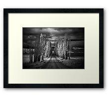 Autumn in Black and White Framed Print