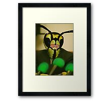 All Intelligent Life Big & Small is Created Equal Framed Print