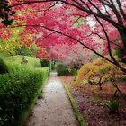 Autumn Delights by Kim Roper