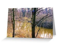 Low Barns Nature Reserve Greeting Card