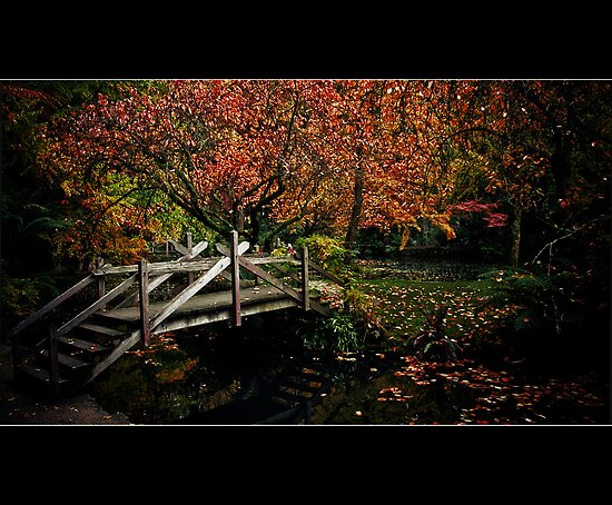 Bridge over Autumn waters by Samantha Cole-Surjan
