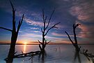 Lake Bonney Sunrise by KathyT