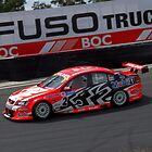 Mark Skaife in action by Angryman