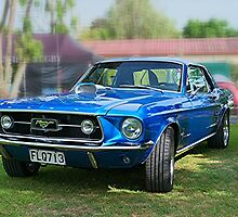 The Blue Mustang........! by Roy  Massicks