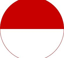 Roundel of the Indonesian Air Force, 1946-1949 by abbeyz71