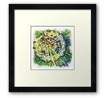 The Atlas Of Dreams - Color Plate 110 Framed Print