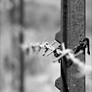 Barbed Wire by Photobum