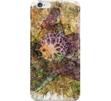 The Atlas Of Dreams - Color Plate 112 iPhone Case/Skin