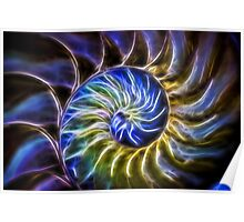Nautilus Shell Abstract Poster