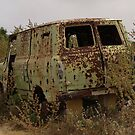 Abandoned Van by Anthony Vella