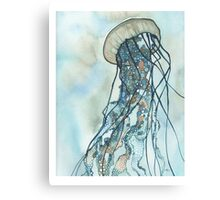 Jellyfish Three Canvas Print