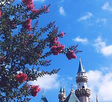 Disneyland Castle In The Summertime  by whitneymicaela
