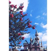 Disneyland Castle In The Summertime  Photographic Print