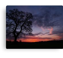 Norfolk Sunrise Canvas Print