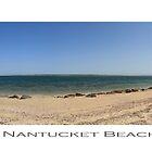 Nantucket Beach by James Hughes