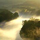 Foggy River by Lisa Miller