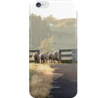 Is it Safe to Cross, Ross, Tas iPhone Case/Skin