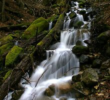 Snow Creek by Julene Mendenhall