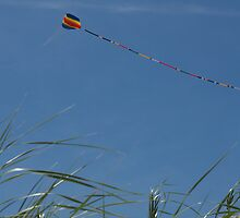 Kite over Dunes; Ocean Grove, NJ by Anna Lisa Yoder