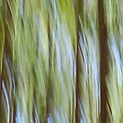 Trees in motion by warriorprincess
