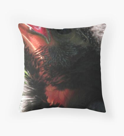 Transparency Throw Pillow