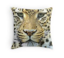 S I N C E R I T Y Throw Pillow