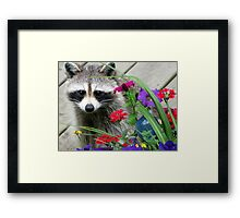 Sweets With Flowers Framed Print