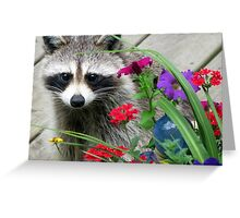Sweets With Flowers Greeting Card