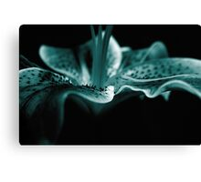 Blue Perfection Canvas Print