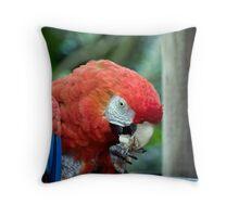 Scarlett Macaw Throw Pillow