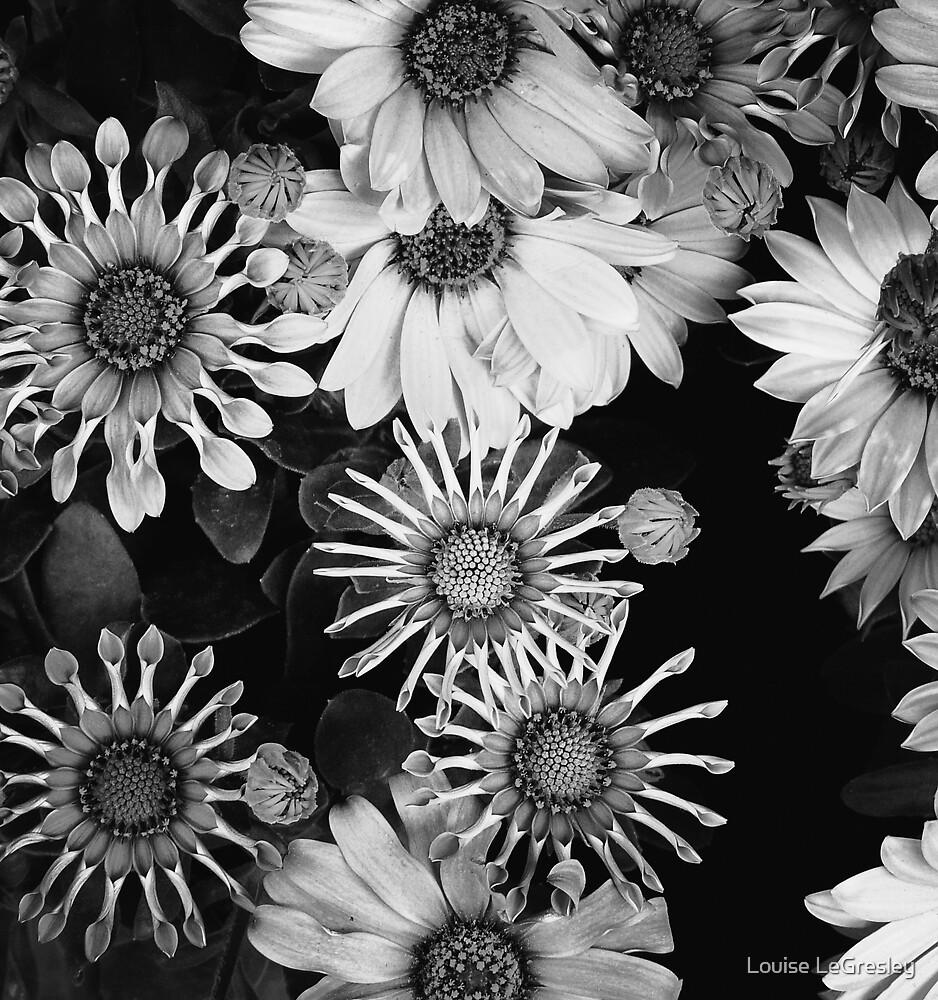 { stars } by Louise LeGresley