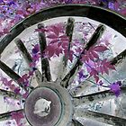 wheel by Sandra McNabb