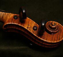 Violin Scroll on Green Velvet by Anna Lisa Yoder