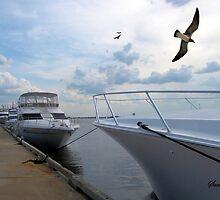Fernandina Harbor Marina by SummerJade