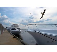 Fernandina Harbor Marina Photographic Print