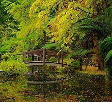 Tranquil Garden by Bette Devine