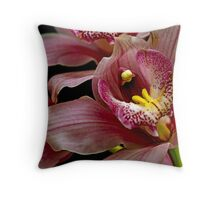 Pink and White Orchid Macro Throw Pillow