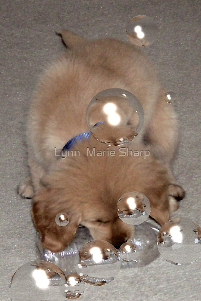Blowing Bubbles by Marie Sharp