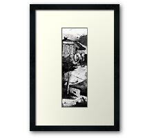 Mrs. Frisbee and the Rats of NIMH Framed Print