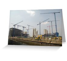 Cranes and more cranes Greeting Card