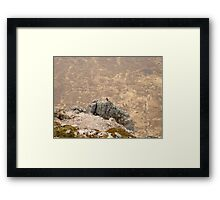 Tough at the Top Framed Print