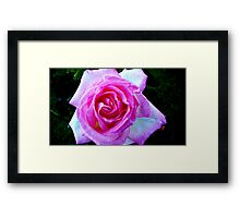 PINK FOR THE LADIES Framed Print