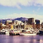 Hobart, Tasmania, Winter 2014 by Brett Rogers
