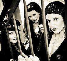 Slinkee Minx Behind bars by Sean Weidemann