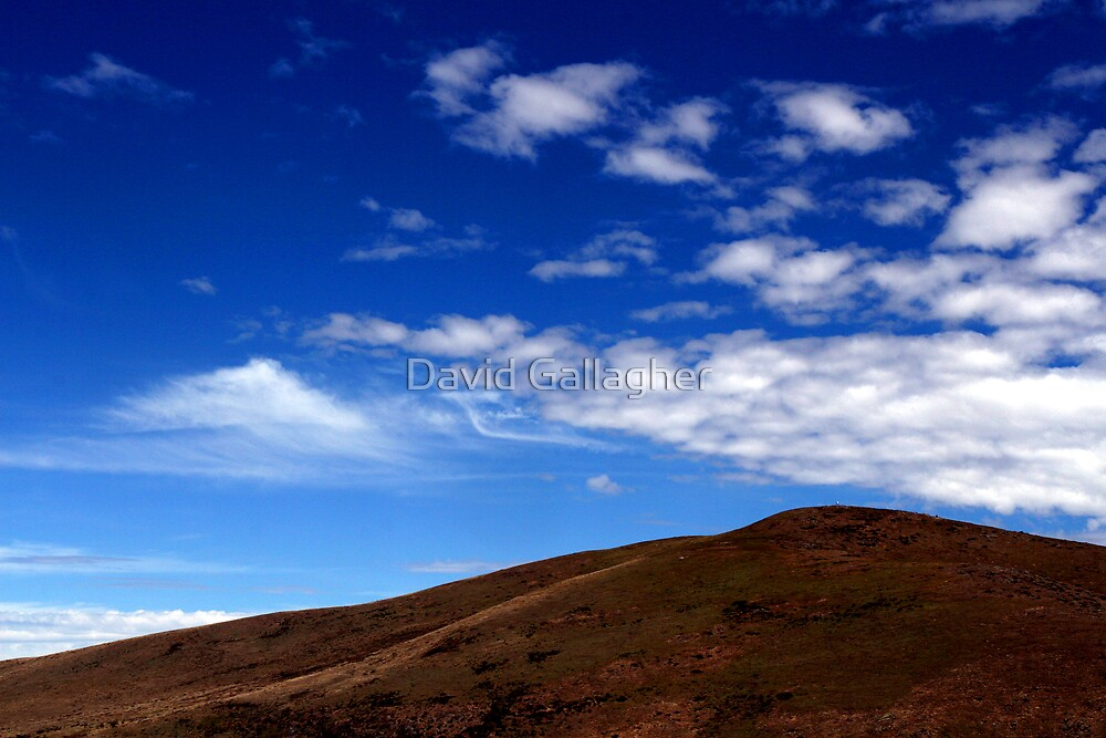 Cool Blue by David Gallagher